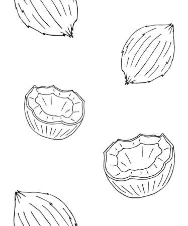 Vector seamless pattern of hand drawn doodle sketch coconut isolated on white background