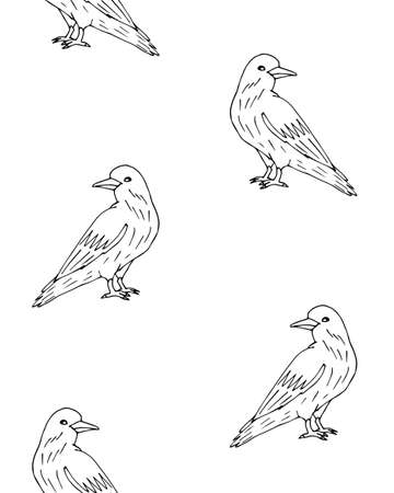Vector seamless pattern of hand drawn doodle sketch raven isolated on white background