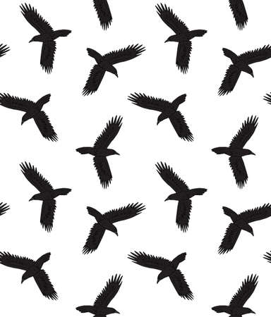 Vector seamless pattern of hand drawn doodle sketch colored flying raven isolated on white background