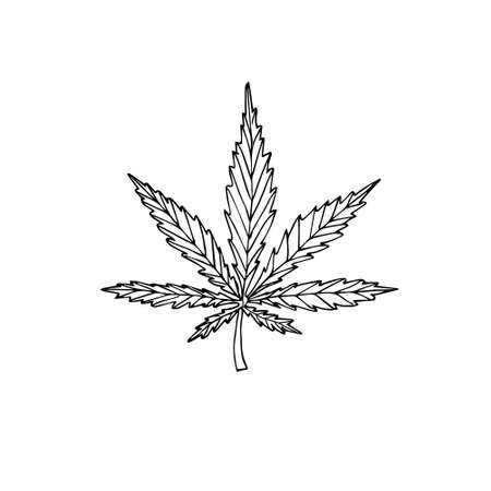 Vector hand drawn doodle sketch hemp cannabis isolated on white background
