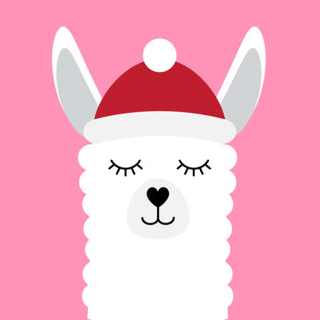 Vector flat cartoon llama face in winter hat and scarf isolated on pink background