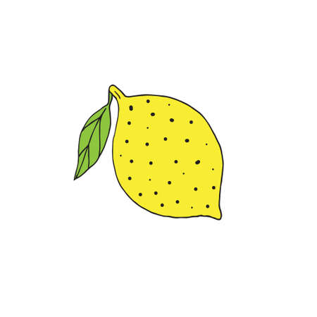 Vector hand drawn doodle sketch lemon isolated on white background Иллюстрация