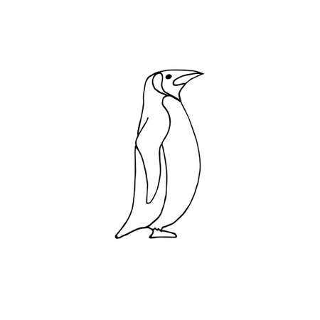Vector hand drawn doodle sketch penguin isolated on white background