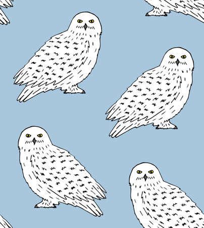 Vector seamless pattern of hand drawn doodle sketch white polar snowy owl isolated on blue background