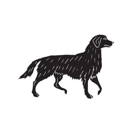 Vector hand drawn doodle sketch black retriever dog isolated on white background