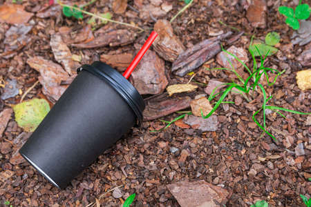 An empty paper coffee cup lies on the ground in the park. Environmental pollution.