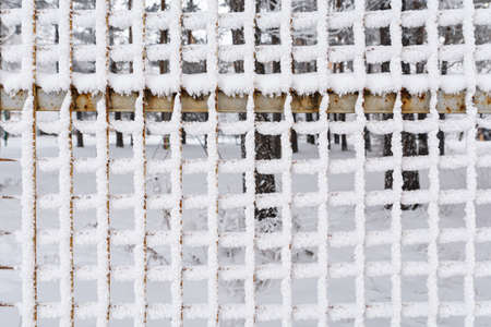 Snow covered rusty metal fence mesh. Freezing day.