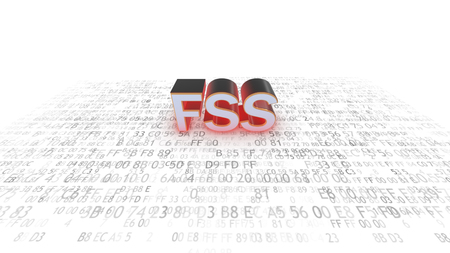 comité d entreprise: Federal Security Service of the Russian Federation. FSS