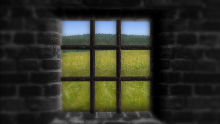 Le concept de privation de liberté. Derrière le mur une belle vie Banque d'images - 76439854