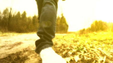 晴れた日にウォーキング。足は、道路に沿って歩いています。