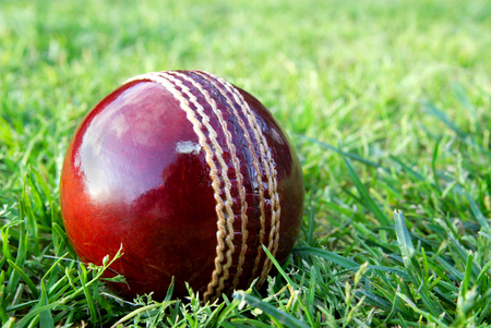 New red cricket ball on grass sporting field before play.
