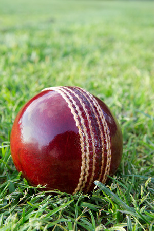 New red cricket ball on grass sporting field.