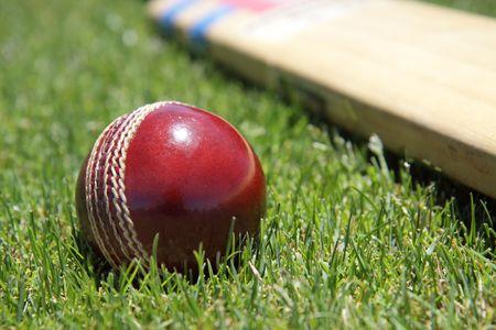 cricket: Nuova palla e mazza da cricket sulla verde erba.