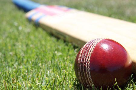 New cricket ball and bat on green grass.