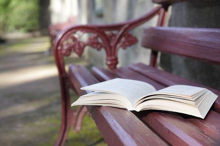 writing book: Un libro aperto su un sedile a panchina parco. Archivio Fotografico