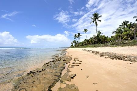 Beach in Porto de Galinhas, Brazil Stock Photo