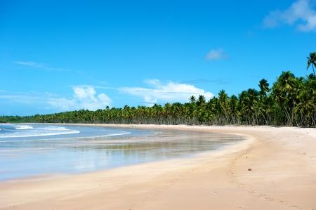 Paradise beach in Ilha do Boipeda, Morro de Sao Paulo, Bahia State, Brazil photo