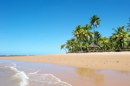 brazil beach: Paradise beach in the Marau Peninsula, Bahia State, Brazil