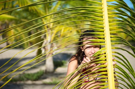 brazil beach swimsuit: Pretty young woman playing with a palm tree in the Marau Peninsula, Bahia State, Brazil Stock Photo