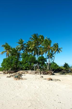 Paradise beach in Morro de Sao Paulo, Bahia State, Brazil photo
