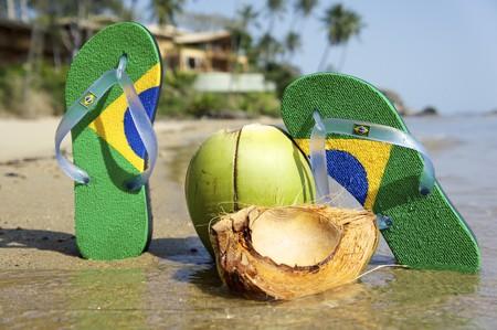 sandal tree: Flipflop brasile�o en la playa de Ilhabela, estado de Sao Paulo, Brasil, RAW disparos.  Foto de archivo