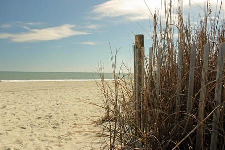 sea oats: Sea oats, sand fencing and dunes frame the path onto a quiet beach  Stock Photo