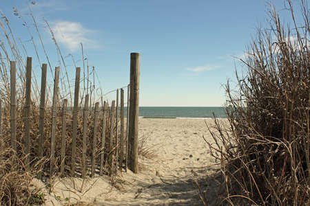 Sea oats, sand fencing and dunes frame the path onto a quiet beach  Stock Photo
