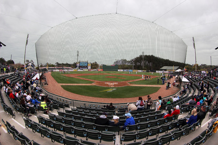 backstop: Wide angle view of Pelicans Ballpark in Myrtle Beach, South Carolina  Home of the Myrtle Beach Pelicans, Single A affiliate of Major League Baseball