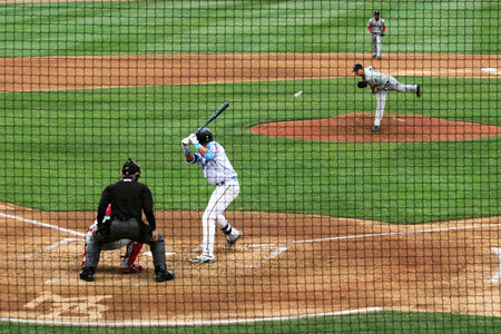 backstop: A baseball pitcher delivers a pitch to home plate