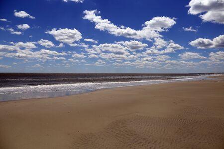 サウスカロライナ海岸沿いの未開発のビーチの静かなストレッチ,