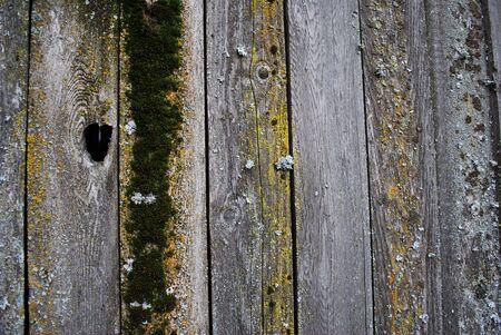 old fence Imagens