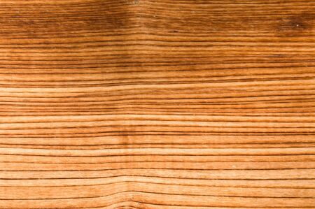 Abstract background like slice of wood timber natural Stock Photo - 13123016