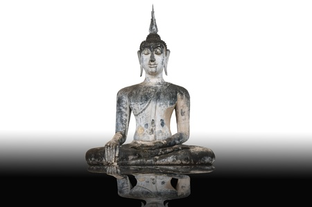 reflection buddha statue isolated  photo