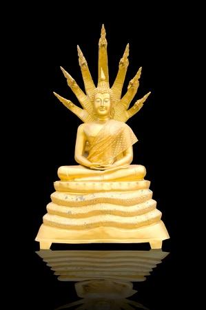 reflection buddha statue isolated  photo