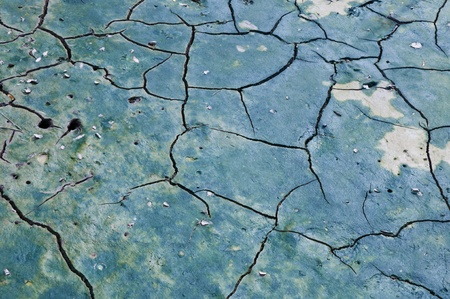 parched: Cracked texture