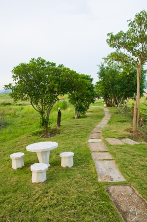 Path of stepping stones leading into lush green garden Stock Photo - 13619870