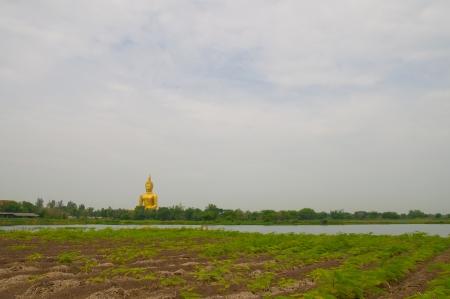 Golden Buddha statue at Wat Muang temple in Angthong, Thailand photo
