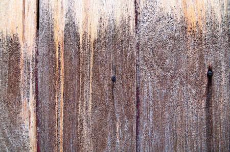 Old wood detail photo