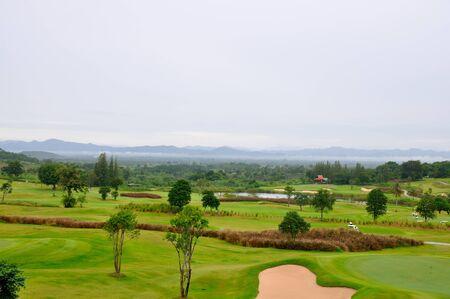 Green grass on a golf field  Stock Photo