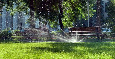 lawn sprinkler: watering system in bright sunlight
