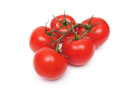 red tomatos on the white background