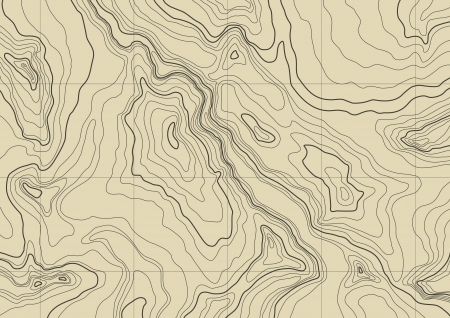 topographic map: abstract topographic map in brown colors
