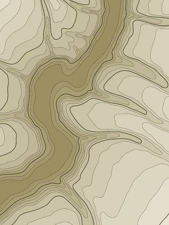 relief: abstract topographic map in brown colors
