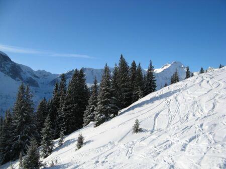 st gallen: Skiing in swiss alps (Flumserberg, St. Gallen, Switzerland)