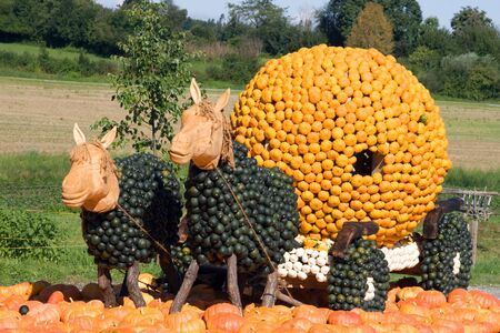 pumpkin patch: Funny squash collection (Autumn 2008, Jukerfarmart, Zurich)