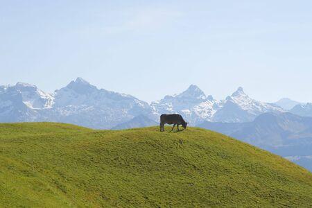 Typical swiss alpine landscape (Autumn 2008) photo