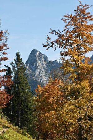 Autumn (indian summer) in swiss alps photo