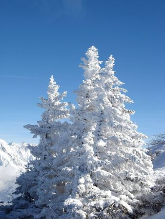 WInter montain landscape in swiss alps photo