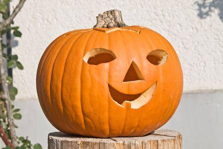 ugliness: Jack-o-lantern pumpkin in the garden Stock Photo