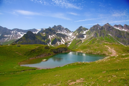 Summer alpine landscape (Pizol, St.Gallen, Switzerland) photo